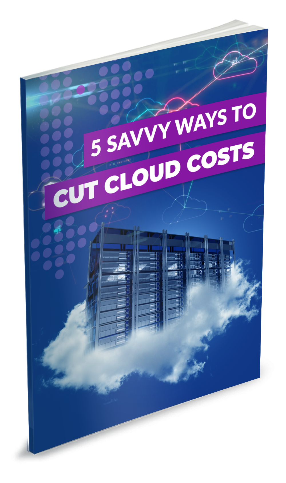 Control Your Cloud Computing Costs for Better ROI book