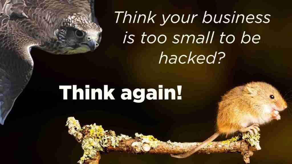 No matter what size your business… yes, you can be hacked